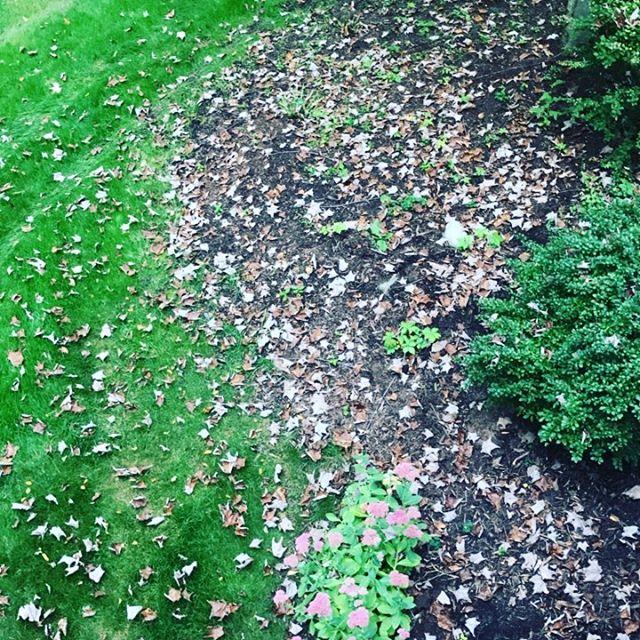 Must be fall. #hlomi